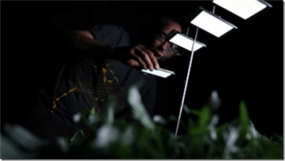 sony ericcson xperia arc greenhouse challenge 3