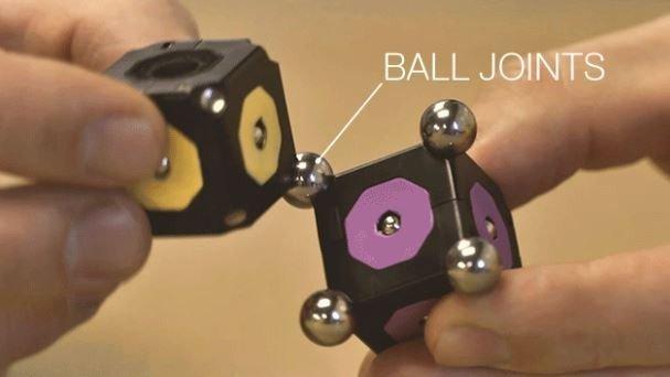 moss robotic kit