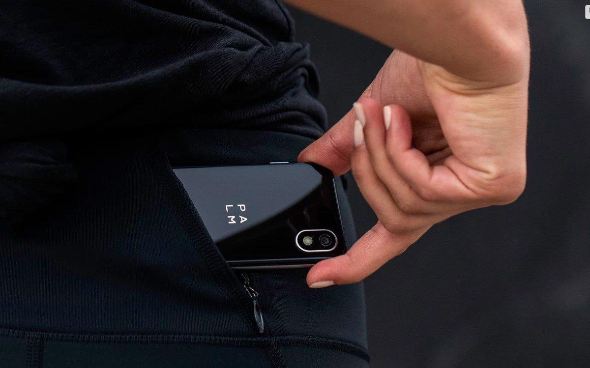 palm companion device