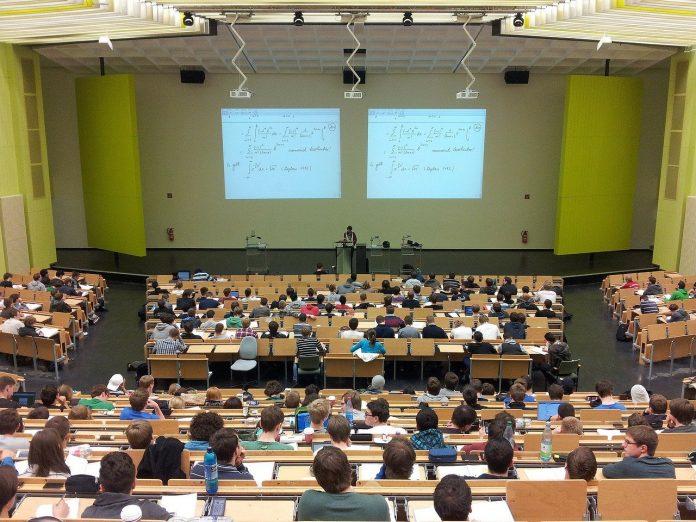 university students careers